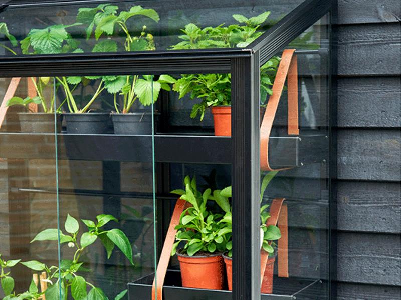 Minidrivhus – 5 skønne drivhuse til altanen og haven [2020]